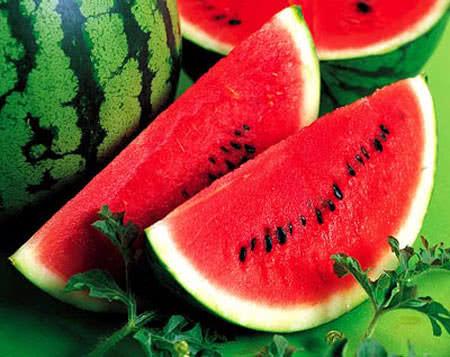 Bài thuốc từ quả dưa hấu