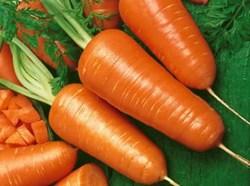 Cà rốt giúp làm đẹp da và tóc