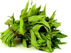 Tác dụng chữa bệnh của rau muống