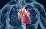 Những thời điểm dễ phát sinh bệnh tim