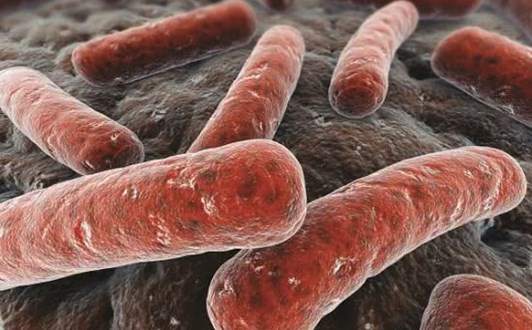 Triệu chứng và cách điều trị bệnh lao phổi
