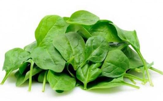 Tác dụng của các loại vitamin B
