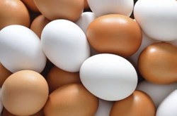Cách bảo quản trứng không cần tủ lạnh