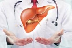 Những nguyên nhân gây bệnh gan
