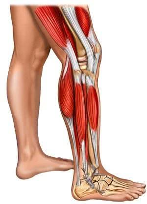 Viêm đa cơ, hình ảnh bệnh viêm đa cơ