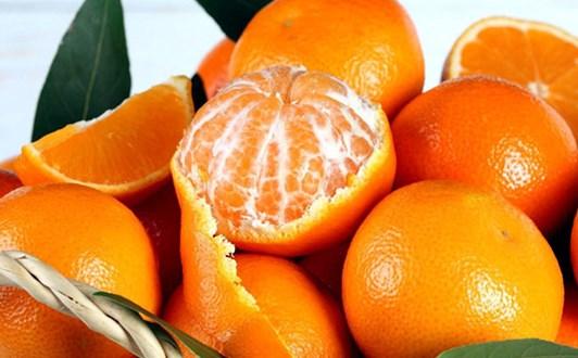 Tác dụng của quả cam, nước cam