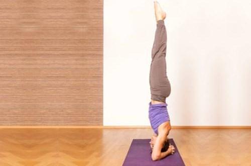 Tư thế tập yoga trồng cây chuối (sirshasana)