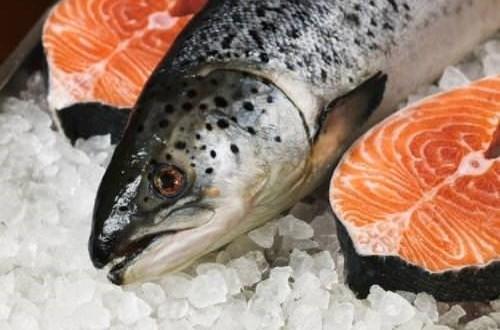 Cách chọn cá hồi tươi ngon và cách chế biến cá hồi