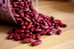 Món ăn, bài thuốc chữa đau dạ dày