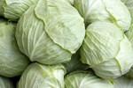 Các loại rau quả có tác dụng giảm cân