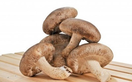 Tác dụng tăng cường hệ miễn dịch của nấm hương