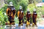 Các loại rượu thuốc giúp phòng và điều trị bệnh