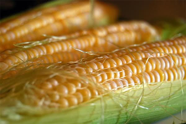 Ngô, bắp ngô, món ngon từ ngô