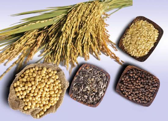 Ngũ cốc, tác dụng của ngũ cốc