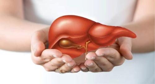 Dấu hiệu cảnh báo gan có thể bị nhiễm độc