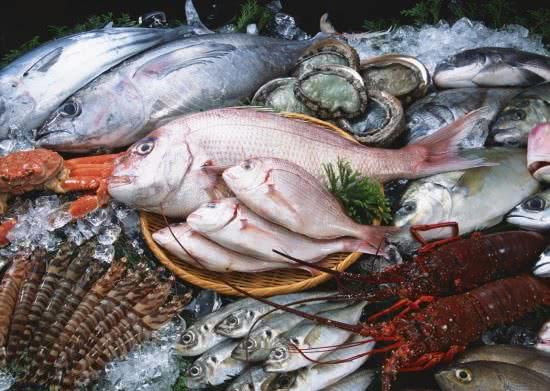 Ăn nhiều hải sản gây bệnh khớp