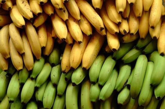 Bệnh trĩ không nên ăn trái cây xanh