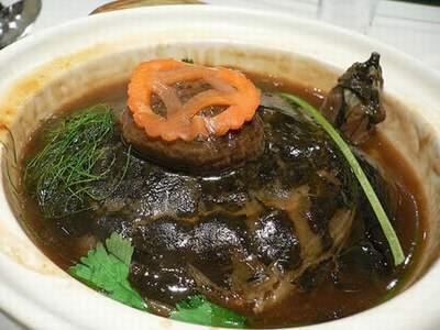 Thịt rùa hầm