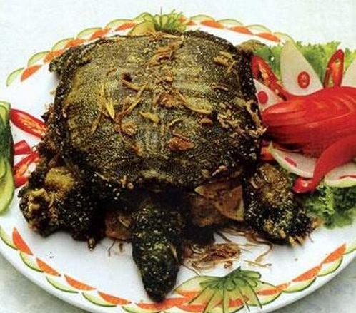 Rùa nướng, món ăn bài thuốc từ rùa