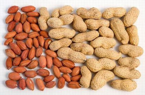 Lạc sống (hạt lạc còn nguyên vỏ) ngâm với giấm có tác dụng ngừa tăng huyết áp.